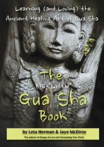 The Big Little Gua Sha Book